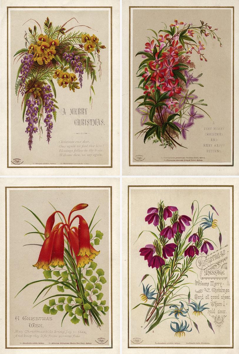 1879: Turner & Henderson, publisher; Helena Forde, artist.