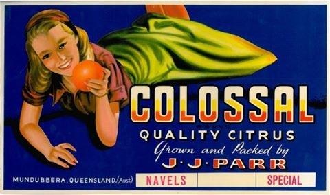 Colossal quality citrus from J.J Para
