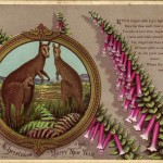 1881 early australian Christmas cards