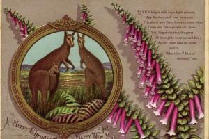 1881 early australian Christmas cards